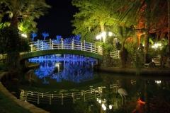ML_bridge_night