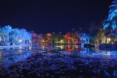 MLnightshot_lake